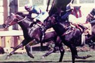 1990 St. Jude